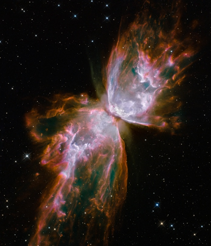 "This ceNebulosa Farfalla, o NGC 6302, fotografata qui da Hubble Space Telescope. Credit: NASA/ESA/Hubblelestial object looks like a delicate butterfly. But it is far from serene. What resemble dainty butterfly wings are actually roiling cauldrons of gas heated to nearly 20 000 degrees Celsius. The gas is tearing across space at more than 950 000 kilometres per hour — fast enough to travel from Earth to the Moon in 24 minutes! A dying star that was once about five times the mass of the Sun is at the centre of this fury. It has ejected its envelope of gases and is now unleashing a stream of ultraviolet radiation that is making the cast-off material glow. This object is an example of a planetary nebula, so-named because many of them have a round appearance resembling that of a planet when viewed through a small telescope. The Wide Field Camera 3 (WFC3), a new camera aboard the NASA/ESA Hubble Space Telescope, snapped this image of the planetary nebula, catalogued as NGC 6302, but more popularly called the Bug Nebula or the Butterfly Nebula. WFC3 was installed by NASA astronauts in May 2009, during the Servicing Mission to upgrade and repair the 19-year-old Hubble. NGC 6302 lies within our Milky Way galaxy, roughly 3800 light-years away in the constellation of Scorpius. The glowing gas is the star's outer layers, expelled over about 2200 years. The ""butterfly"" stretches for more than two light-years, which is about half the distance from the Sun to the nearest star, Proxima Centauri. The central star itself cannot be seen, because it is hidden within a doughnut-shaped ring of dust, which appears as a dark band pinching the nebula in the centre. The thick dust belt constricts the star's outflow, creating the classic ""bipolar"" or hourglass shape displayed by some planetary nebulae. The star's surface temperature is estimated to be over 220 000 degrees Celsius, making it one of the hottest known stars in our galaxy. Spectroscopic observations made with ground-based telescopes show that the gas is roughly 20 000 degrees Celsius, which is unusually hot compared to a typical planetary nebula. The WFC3 image reveals a complex history of ejections from the star. The star first evolved into a huge red giant, with a diameter of about 1000 times that of our Sun. It then lost its extended outer layers. Some of this gas was cast off from its equator at a relatively slow speed, perhaps as low as 32 000 kilometres per hour, creating the doughnut-shaped ring. Other gas was ejected perpendicular to the ring at higher speeds, producing the elongated ""wings"" of the butterfly-shaped structure. Later, as the central star heated up, a much faster stellar wind, a stream of charged particles travelling at more than 3.2 million kilometres per hour, ploughed through the existing wing-shaped structure, further modifying its shape. The image also shows numerous finger-like projections pointing back to the star, which may mark denser blobs in the outflow that have resisted the pressure from the stellar wind. The nebula's reddish outer edges are largely due to light emitted by nitrogen, which marks the coolest gas visible in the picture. WFC3 is equipped with a wide variety of filters that isolate light emitted by various chemical elements, allowing astronomers to infer properties of the nebular gas, such as its temperature, density and composition. The white-coloured regions are areas where light is emitted by sulphur. These are regions where fast-moving gas overtakes and collides with slow-moving gas that left the star at an earlier time, producing shock waves in the gas (the bright white edges on the sides facing the central star). The white blob with the crisp edge at upper right is an example of one of those shock waves. NGC 6302 was imaged on 27 July 2009 with Hubble's Wide Field Camera 3 in ultraviolet and visible light. Filters that isolate emissions from oxygen, helium, hydrogen, nitrogen and sulphur from the planetary nebula were used to create this composite image. These Hubble observations of the planetary nebula NGC 6302 are part of the Hubble Servicing Mission 4 Early Release Observations."