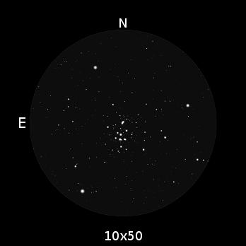 Dimensione di M44 nel campo visivo di un binocolo 10x50.