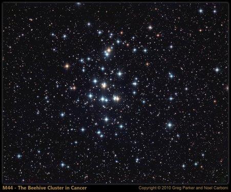 M44, lunga esposizione, Greg Parker e Noel Carboni