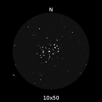 Le Pleiadi, per come appaiono nel campo visivo di un binocolo 10x50. Sono estremamente brillanti, azzurre.